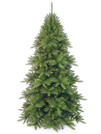 Alsace Spruce