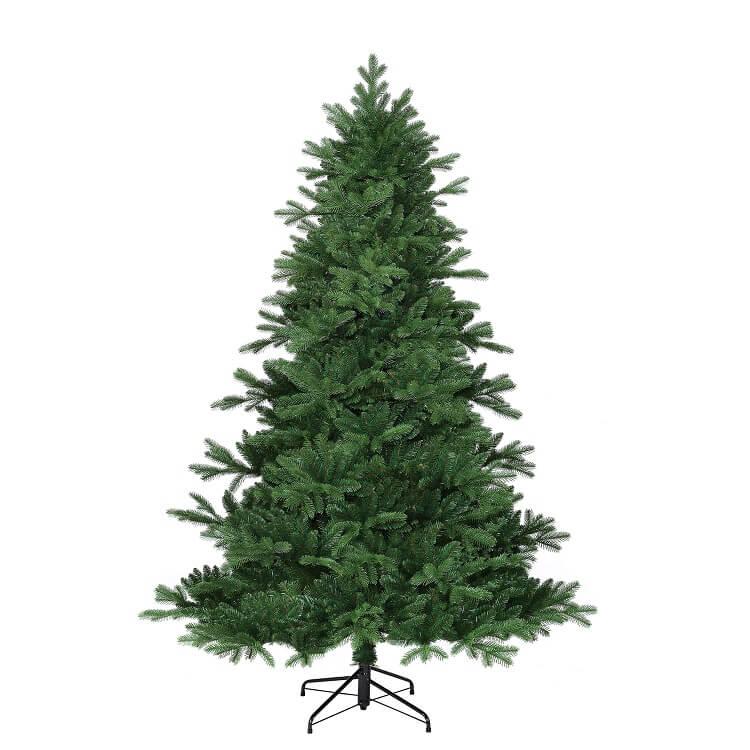 Brampton Spruce
