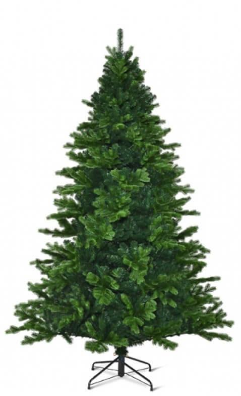 Toronto Spruce Green
