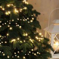 Kerstboom Met Warm Witte Kerstverlichting