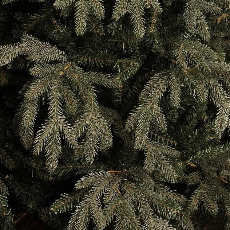 Takken Macallan Pine Blue